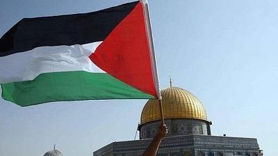 فلسطين تسجل 552 إصابة كورونا جديدة