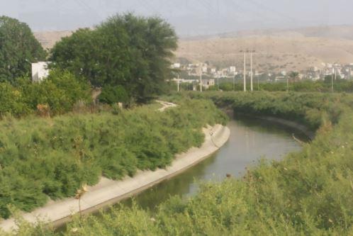 إزالة خراطيم مخالفة تسحب المياه من قناة الملك عبدالله