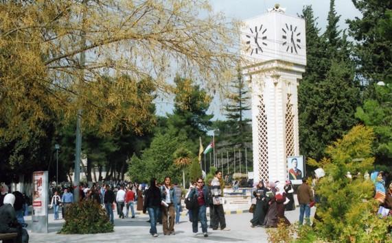 وقف استحداث تخصصات راكدة ومشبعة في الجامعات