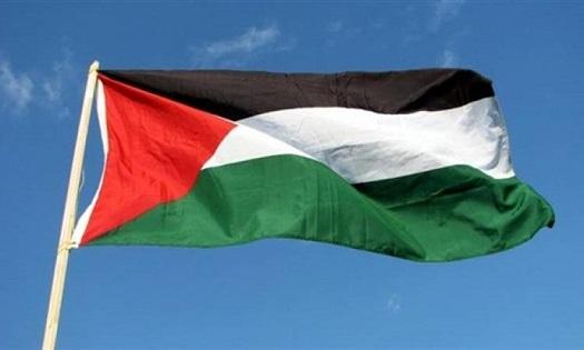 عدد الإصابات بالسلالة البريطانية المتحولة في فلسطين