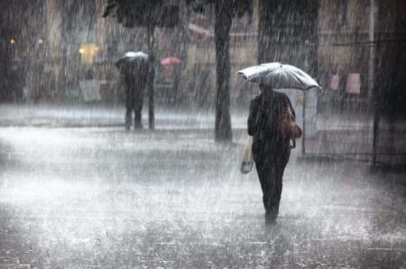 الطيبة تسجل أعلى هطول مطري باربد