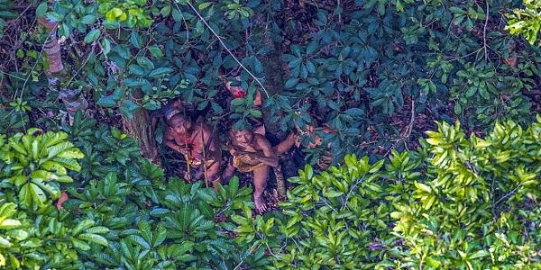 سكان البرازيل الاصليين 8a70a375ef3123d4c0e7ea4bac432003